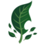 Leafpetal.png