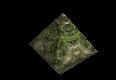 ForestGround.png