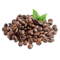 CoffeeSeeds.png