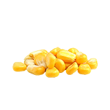 CornSeed.png