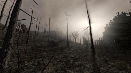 BurntForest.jpg