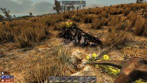 Coal mound1.jpg