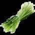 YuccaFibers