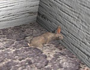 RabbitScreenshot.png
