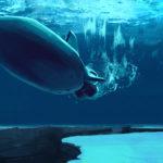 Submarine concept.jpg