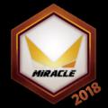 Miracle 2018 Logo Spray.png