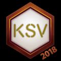 KSV 2018 Logo Spray.png