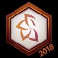 Team BlossoM 2018 Logo Spray.png