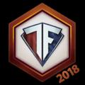 Team Freedom 2018 Logo Spray.png