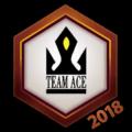 Team Ace 2018 Logo Spray.png