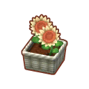 Int 2480 flower2 cmps.png