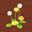 Int 3710 dandelion cmps.png