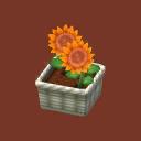 Int 2480 flower3 cmps.png