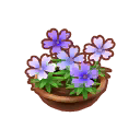 Potted P. Moss Blossoms - Animal Crossing: Pocket Camp Wiki