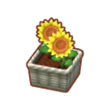 Int 2480 flower1 cmps.png