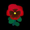 Red Pansies.png