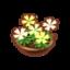Int 3920 flower2 cmps.png