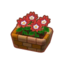 Int 2050 flower2 cmps.png