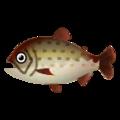 Fish Itou.png