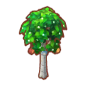 Int 2370 tree02 cmps.png