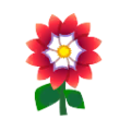 Red Dahlias.png