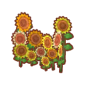 Int 2480 sunflower cmps.png