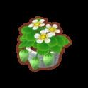 Int 2250 flower1 cmps.png