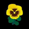 Yellow Pansies.png