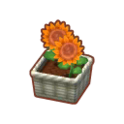 Int 2480 flower3 cmps.png