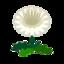 Ev flower 032 01.png