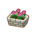 Int 3010 flower3 cmps.png