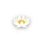 Hat flower lily.png