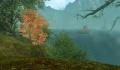 Silentforest1.jpg