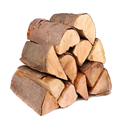 Dry Firewood Primitive Plus Official Ark Survival