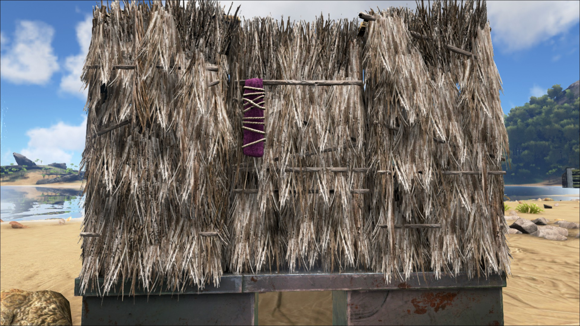 Thatch Door Official Ark Survival Evolved Wiki