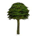 Garden Tree (Mobile).png