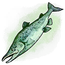 Old Smelly Fish (Mobile).png