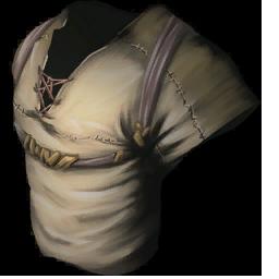 File:Cloth Shirt.png