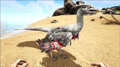 Microraptor PaintRegion5.jpg