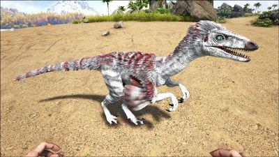 Troodon PaintRegion4.jpg