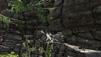 Skellet Canyon Cave (Ragnaork).jpg