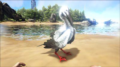 Ichthyornis PaintRegion1.jpg