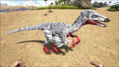 Troodon PaintRegion5.jpg