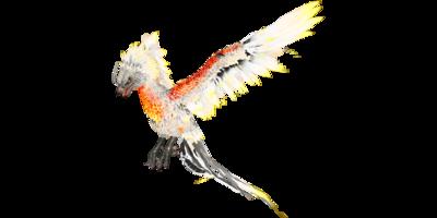 Phoenix PaintRegion5.png
