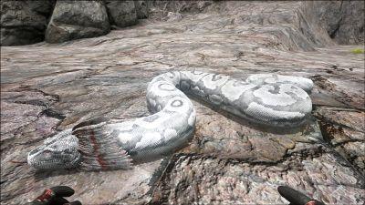 Titanoboa PaintRegion3.jpg