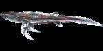 Astrocetus PaintRegion4.png