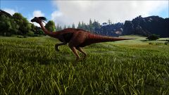 Gallimimus in the Plains.jpg
