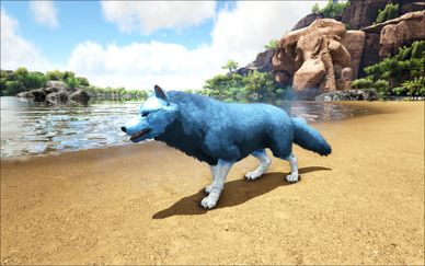 Mod Ark Eternal Elemental Ice Direwolf (Tamed) Image.jpg
