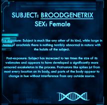 Dossier Broodgenetrix.png