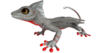 Glowtail PaintRegion4.png